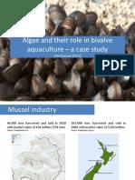 Aquaculture Mussels