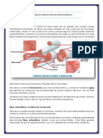 SISTEMA DE CONDUCCIÓN ELECTRICO.docx