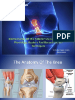 Biomechanics of the Anterior Cruciate Ligament