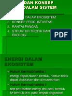 1. ENERGI DALAM EKOSISTEM 2. KONSEP PRODUKTIVITAS 3. RANTAI PANGAN 4. STRUKTUR TROFIK DAN PIRAMIDA EKOLOGI.docx