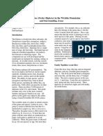 06 Common Flies AChiri 508.pdf