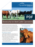 Bio Security for Beef
