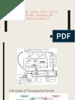 Fetal Immune Response Toxoplasmosis