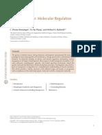 jurnal embriologi.pdf
