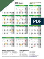 Calendario 2019 Goias Retrato m