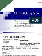 Morfo-Fisiología-Copiar.pdf