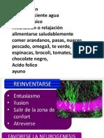 neurogenesis.pptx