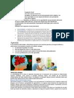 AGNOSIA VISUAL.docx