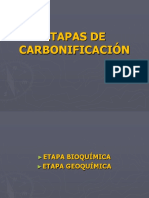 etapas de la carbonificación