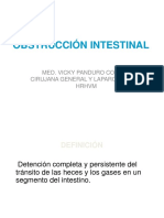 C04 Dra Vicky Obstruccion Intestinal