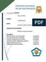 INFORME MOROCOCHA 2018-II (1).docx