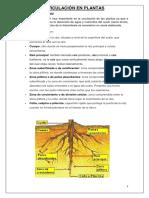guía biología