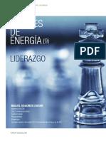 Udaondo_Fuentes de energia 9 - Liderazgo