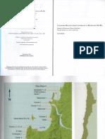 Massone et al 2011 c-r biobio.pdf