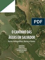 caminhodasaguas.pdf