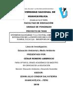 PROYECTO INVESTIGACIÓN  CESAR ROMERO AMBRCIO 2018.docx