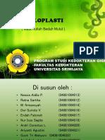 alveoplasti