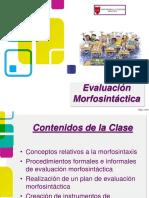 Ev Morfosintectica 2013