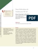 Molecular-B.pdf