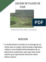FLUJOS DE CAJA TITULARIZADOS.pdf
