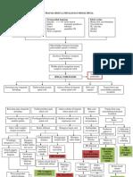 Klp 2 - WOC Trauma Medula Spinalis revisi.docx