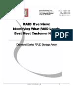 Raid Overview