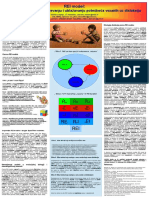 REI model disleksije.pdf