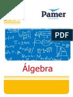 Álgebra 1er año.pdf
