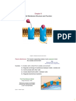 Chapter 05 - Plasma Membrane (2).pdf