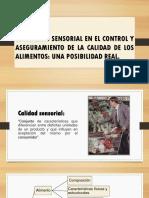 Exposicion Final Sensorial