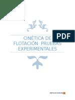 CINÉTICA DE FLOTACIÓN - CORREGIDO.docx