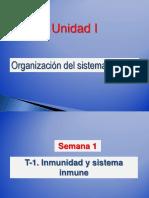 T1 2 Inmunidad Sistema Inmune Órganos Linfoides