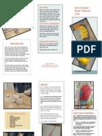 brochure- 2nd birds texture