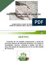 Proyecto Inclusivo de Salud Para Veracruz