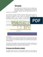 Difusión-Simple.docx