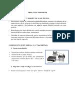 ELECTROFORESIS-resumen.docx