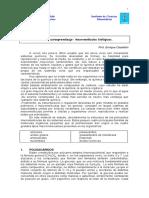 Apuntes Macromoleculas.pdf