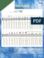 flutes_fingerings (1).pdf