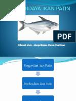 Budidaya Ikan Patin - Angellique