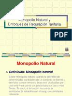 Monopolio Natural y Enfoques de Regulacion FINALFINAL