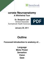 1 Stroke Neuroanatomy