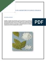organica1.docx