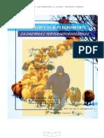 Pastoral Para Imprimir -Libro