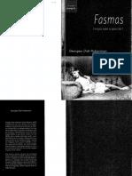 FASMAS.pdf