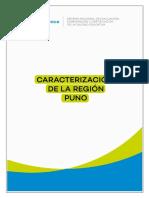 Caracterización de La Región Puno 2018 Sineace