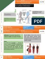 Displasia del Desarrollo de Cadera y escoliosis