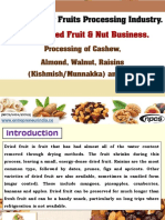 Profitable Dry Fruits Processing Industry-422647-.pdf