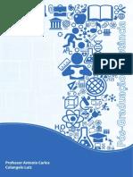 apostila Economia da engenharia.pdf