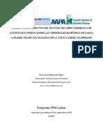 Tesis_de_Grado_PPM_LATINO.doc_(AAPA)-Oscar_Maldonado-06-08-2009.pdf