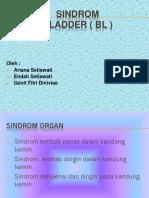 Sindrom Organ & Meredian BL (6)
